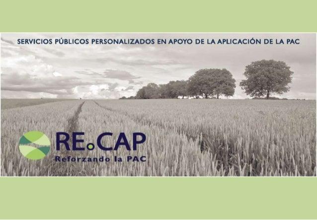 RECAP Horizon 2020 Project - Spanish Brochure