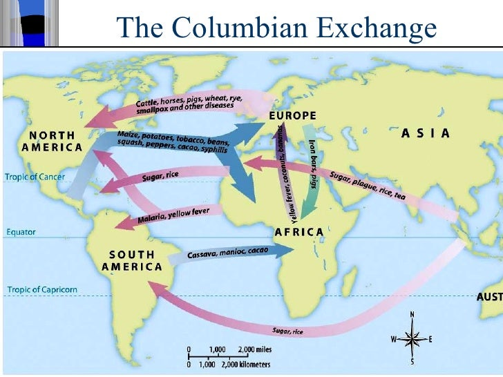english french spanish colonization america The french, spanish, and english all tried to colonize the western hemisphere the french colonization in america started in the 16th century, and continued through centuries as france created an empire in the western hemisphere.