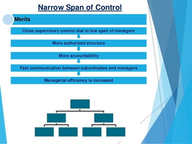 Span of control chain of command 11 narrow span of control publicscrutiny Gallery