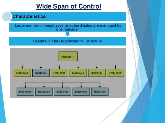 Span of control chain of command 7 wide span of control publicscrutiny Image collections