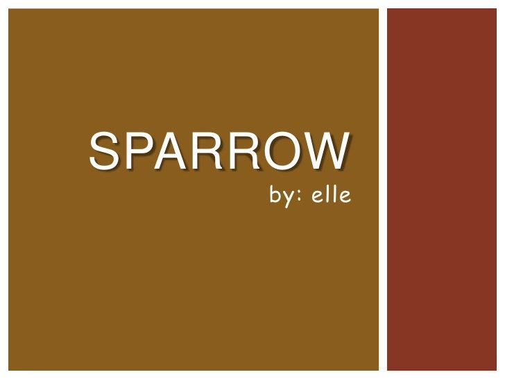 SPARROW    by: elle