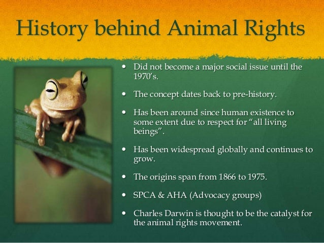 informative speech animal abuse Spc2023 animal rights informative speech presentation 1 animal rightsan in-depth look 2 1what are animal rights1are animal rights.