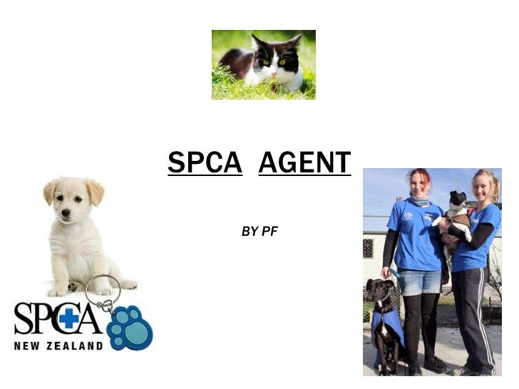 SPCA   AGENT BY   PF