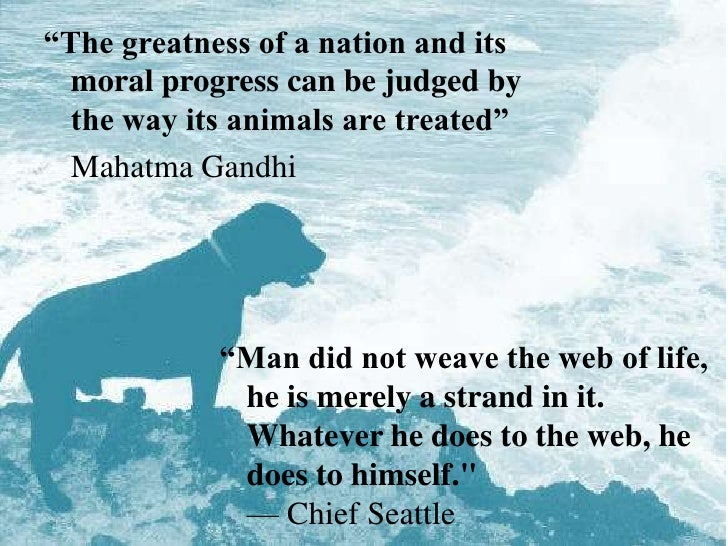 """The greatness of a nation and its moral progress can be judged by the way its animals are treated""<br />	Mahatma Gandhi<b..."