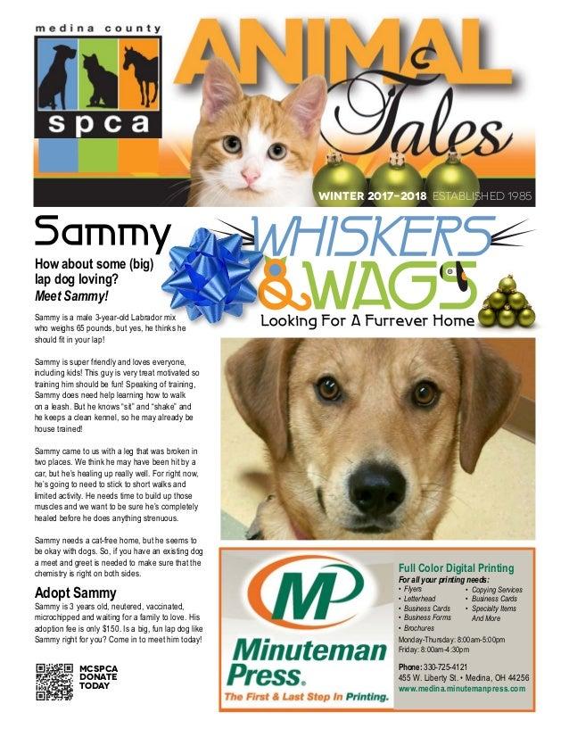 Medina County SPCA newsletter winter 2017