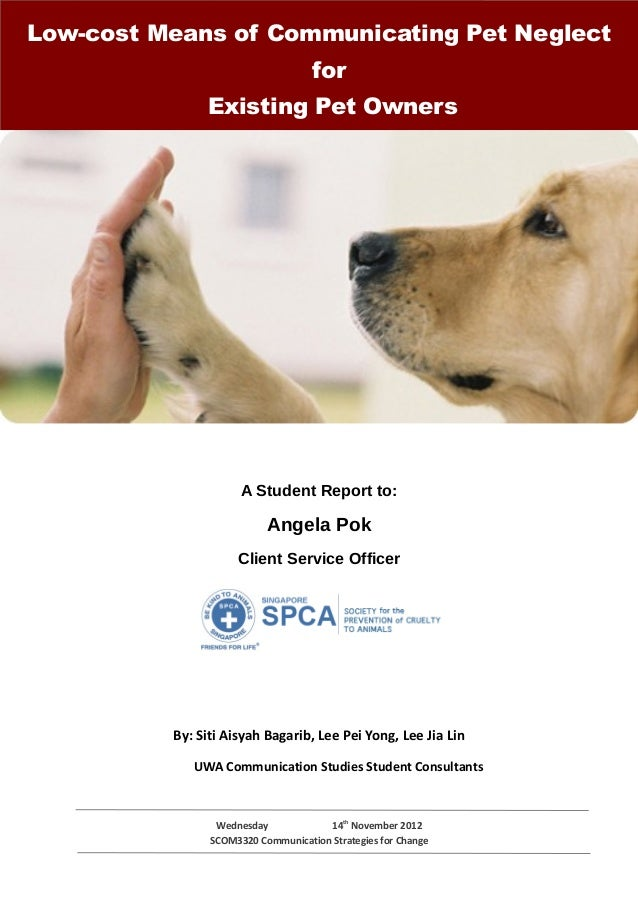 Spca team consultancy report
