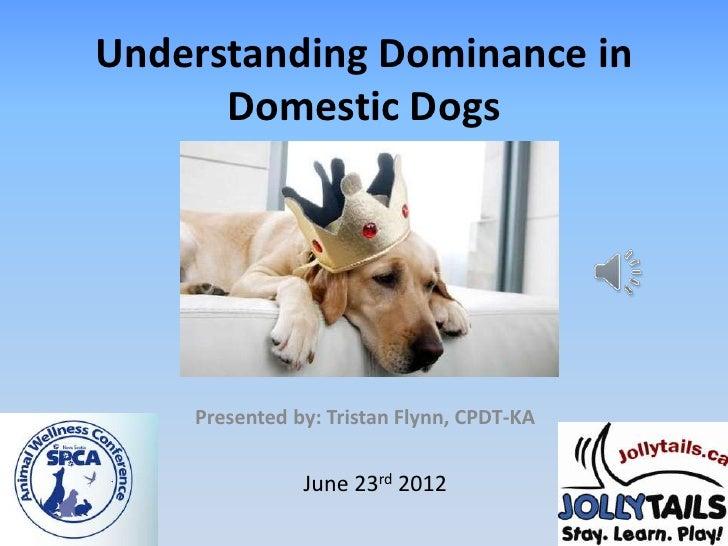 Understanding Dominance in      Domestic Dogs    Presented by: Tristan Flynn, CPDT-KA               June 23rd 2012