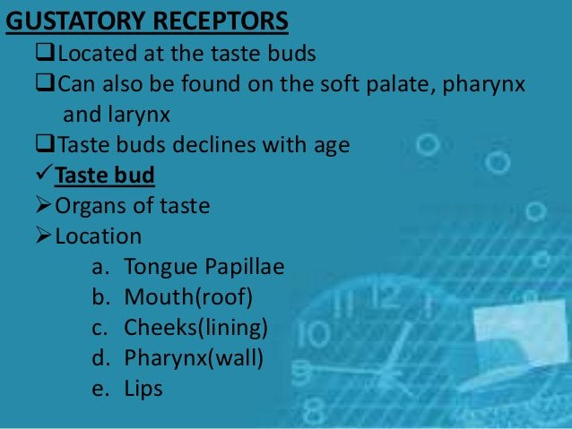 GUSTATORY RECEPTORS Located at the taste buds Can also be found on the soft palate, pharynx and larynx Taste buds decli...
