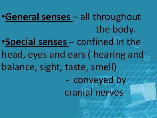 •General senses – all throughout the body. •Special senses – confined in the head, eyes and ears ( hearing and balance, si...