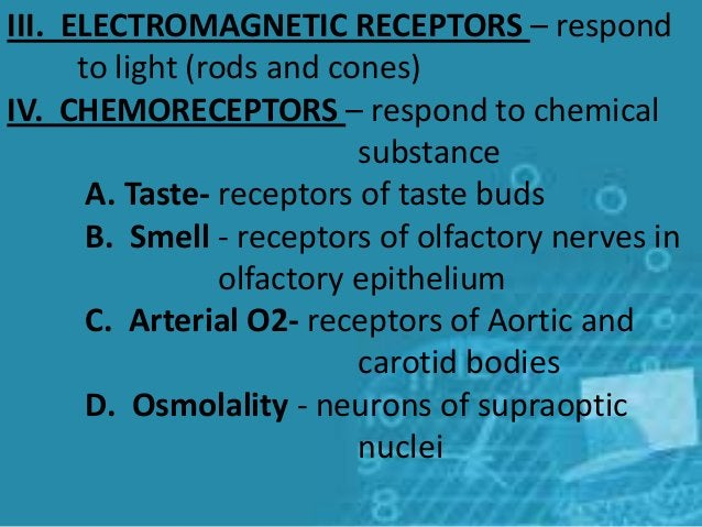 III. ELECTROMAGNETIC RECEPTORS – respond to light (rods and cones) IV. CHEMORECEPTORS – respond to chemical substance A. T...