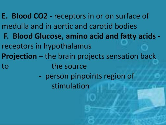 E. Blood CO2 - receptors in or on surface of medulla and in aortic and carotid bodies F. Blood Glucose, amino acid and fat...