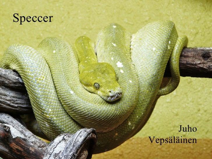 Speccer                 Juho          Vepsäläinen