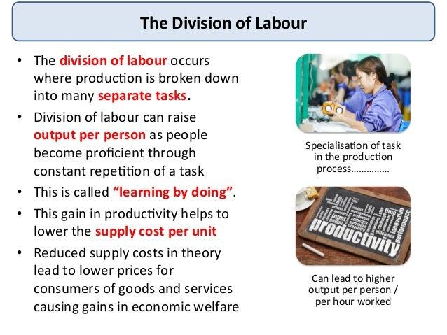 DIVISION OF LABOUR IN ECONOMICS DOWNLOAD