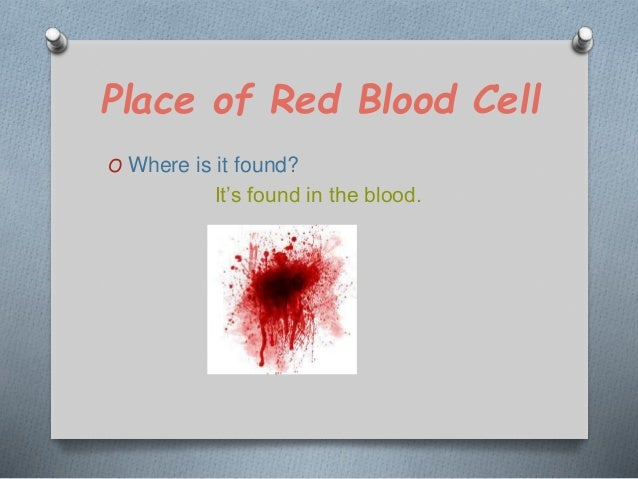 what do specialized cells do ppt video online download
