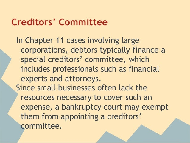Chapter 11 Bankruptcy Special Procedu...