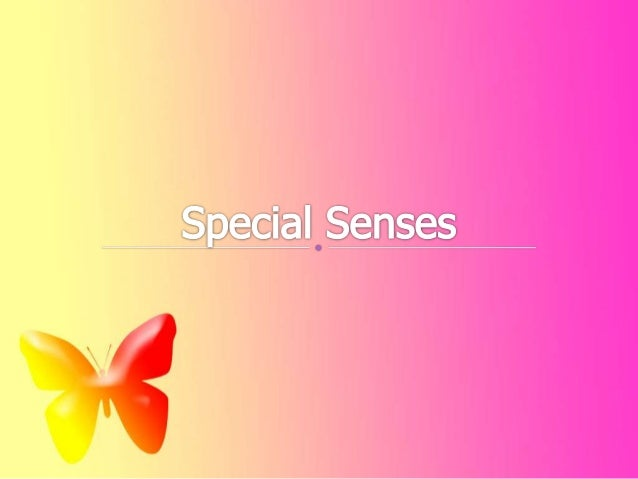 Vision is perception of light emitted or reflected from objects in the environment Stimulus- light waves