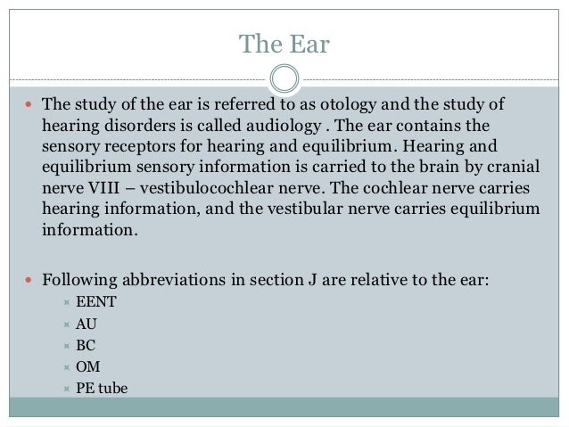 What part of the ear contains the sensory receptors for hearing?