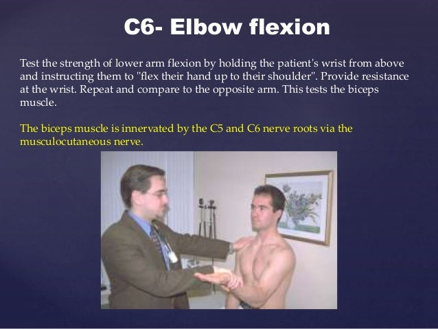 C7- Elbow extension Now have the patient extend their forearm against the examiner's resistance. Make certain that the pat...