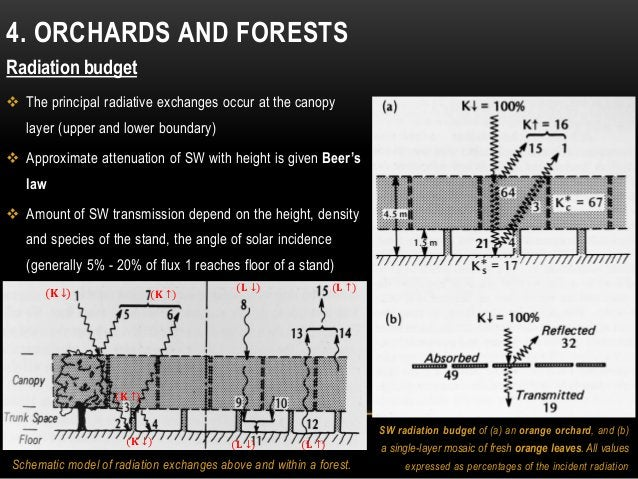 4. ORCHARDS AND FORESTS Radiation budget  The principal radiative exchanges occur at the canopy layer (upper and lower bo...