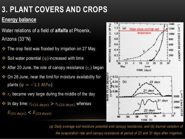 3. PLANT COVERS AND CROPS Energy balance Water relations of a field of alfalfa at Phoenix, Arizona (33°N)  The crop field...