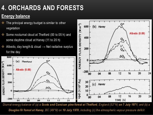 4. ORCHARDS AND FORESTS Energy balance  The principal energy budget is similar to other vegetation  Some nocturnal cloud...