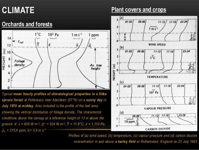 CLIMATE Orchards and forests Profiles of (a) wind speed, (b) temperature, (c) vapour pressure and (d) carbon dioxide conce...