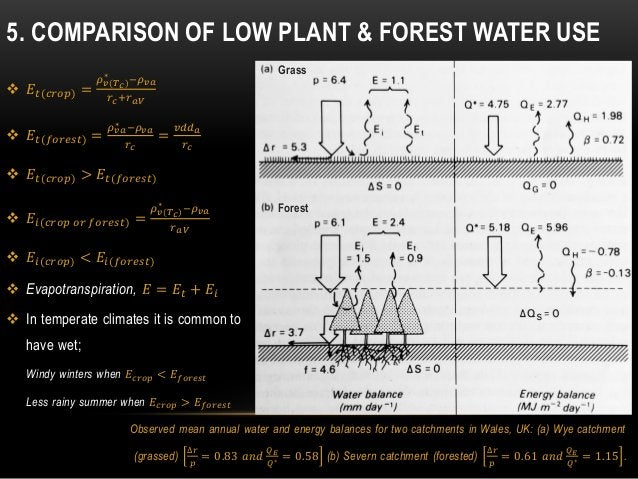 5. COMPARISON OF LOW PLANT & FOREST WATER USE  𝐸𝑡(𝑐𝑟𝑜𝑝) = 𝜌 𝑣(𝑇 𝑐) ∗ −𝜌 𝑣𝑎 𝑟 𝑐+𝑟 𝑎𝑉  𝐸𝑡(𝑓𝑜𝑟𝑒𝑠𝑡) = 𝜌 𝑣𝑎 ∗ −𝜌 𝑣𝑎 𝑟 𝑐 = 𝑣𝑑𝑑...