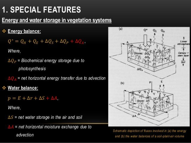 Schematic depiction of fluxes involved in (a) the energy and (b) the water balances of a soil-plant-air volume 1. SPECIAL ...