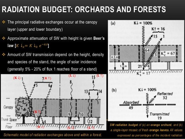 RADIATION BUDGET: ORCHARDS AND FORESTS  The principal radiative exchanges occur at the canopy layer (upper and lower boun...