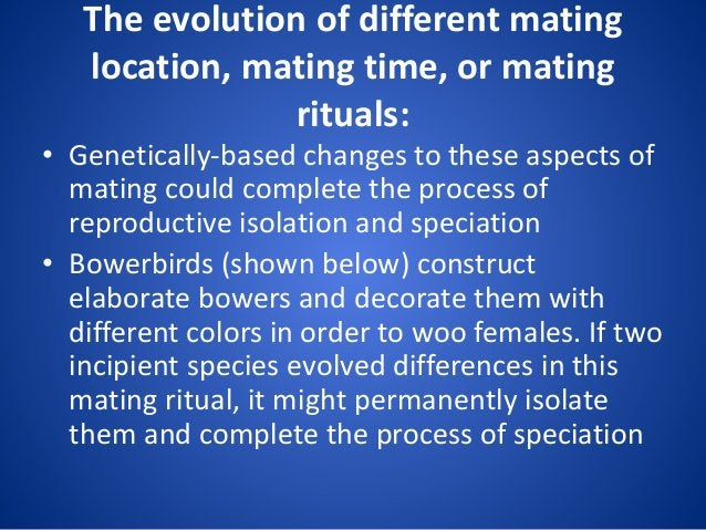 The evolution of different mating location, mating time, or mating rituals: • Genetically-based changes to these aspects o...