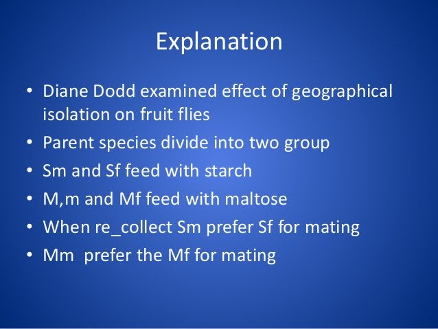 Explanation • Diane Dodd examined effect of geographical isolation on fruit flies • Parent species divide into two group •...