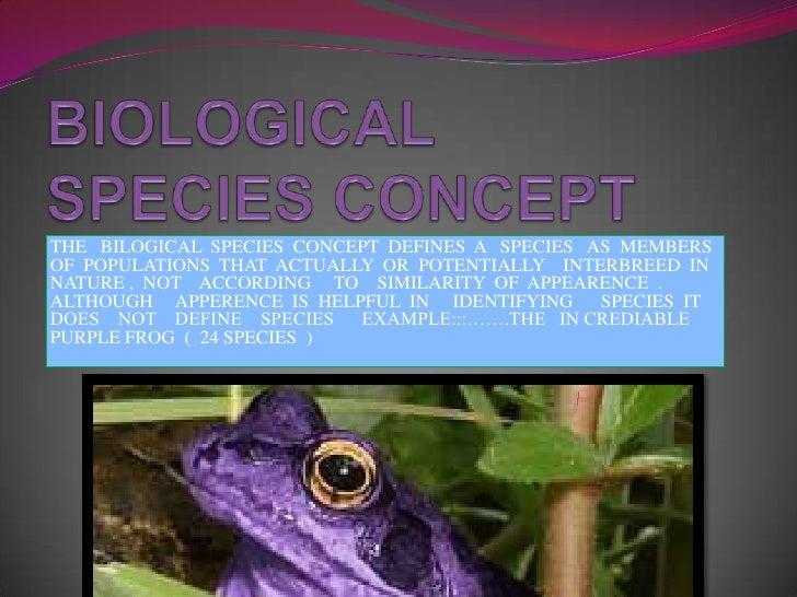 BIOLOGICAL  SPECIES CONCEPT<br />THE   BILOGICAL  SPECIES  CONCEPT  DEFINES  A   SPECIES   AS  MEMBERS   OF  POPULATIONS  ...