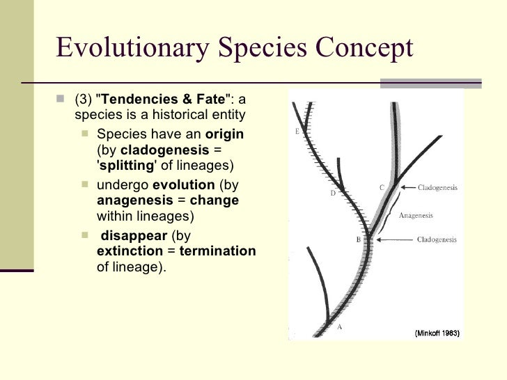 the concept of species Evolutionary species concept (esc): an evolving lineage an evolutionary species is a single lineage of ancestor-descendant populations which maintains its identity from other such lineages and which has its own evolutionary tendencies and historical fate.