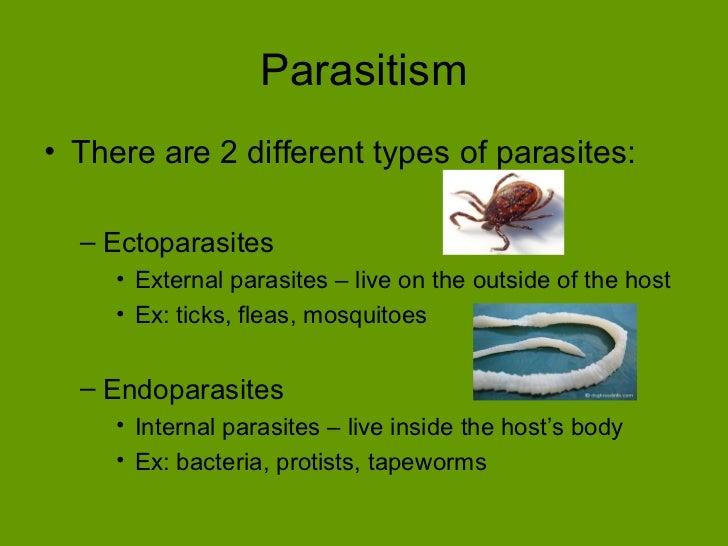 Parasitic symbiotic relationship examples