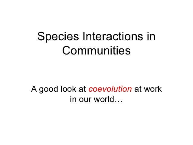 Species Interactions in     CommunitiesA good look at coevolution at work          in our world…