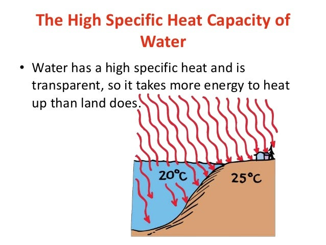 specific heat Time-saving video on specific heat specific heat is the amount of heat required to raise one gram of any substance one degree celsius or kelvin specific heat is an important concept in.