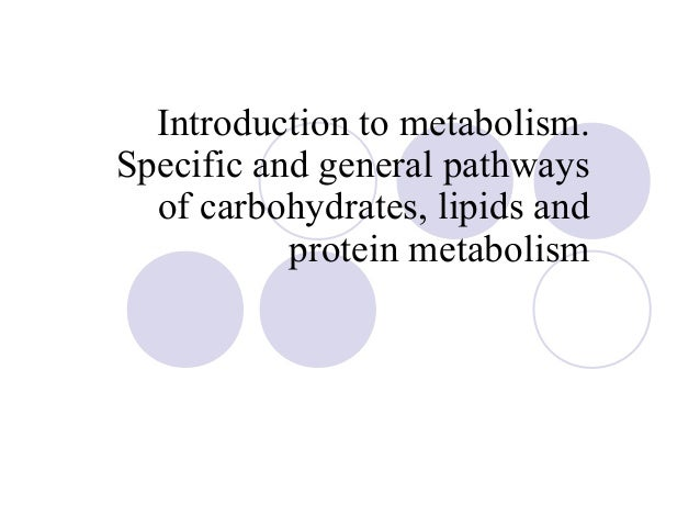 Introduction to metabolism. Specific and general pathways of carbohydrates, lipids and protein metabolism