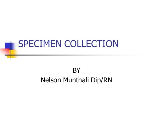 SPECIMEN COLLECTION             BY    Nelson Munthali Dip/RN