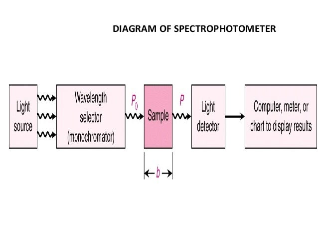 diagram of spectrometer spectrophotometry diagram of lily of the valley #13