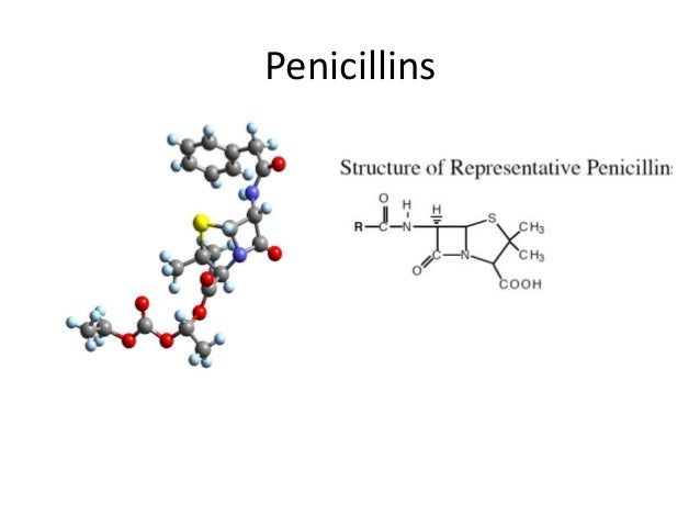 PenG,V, Nafcillin, Oxacillin, FluClox and Clox are bulky and less   soluble in water Amph, Amoxy are    more polardissolve...