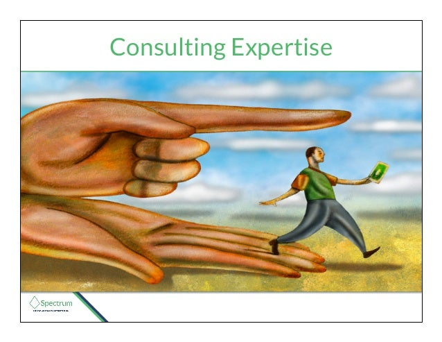 Consulting Expertise