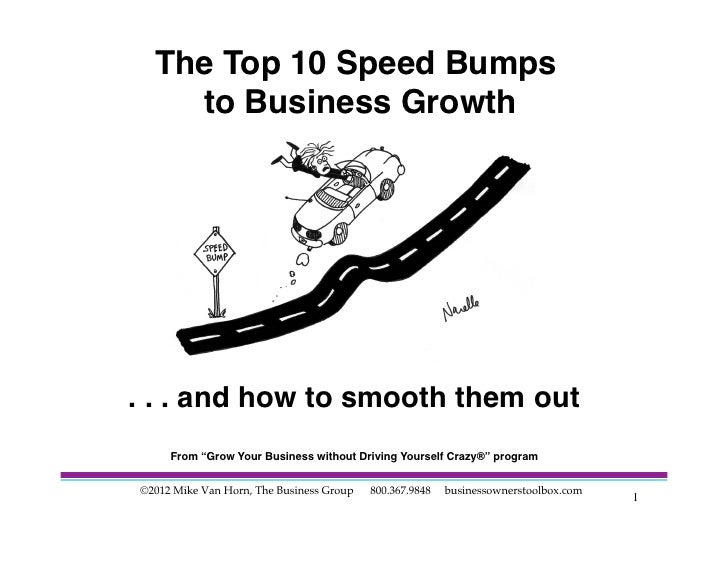 Speed Bumps to Business Growth 2012