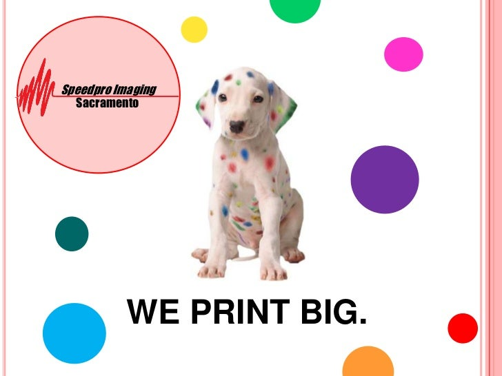 Speedpro Imaging <br />Sacramento<br />WE PRINT BIG.<br />