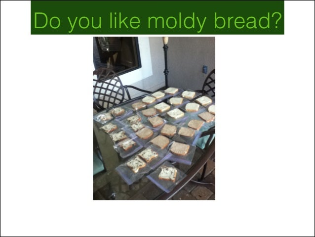 Do you like moldy bread?