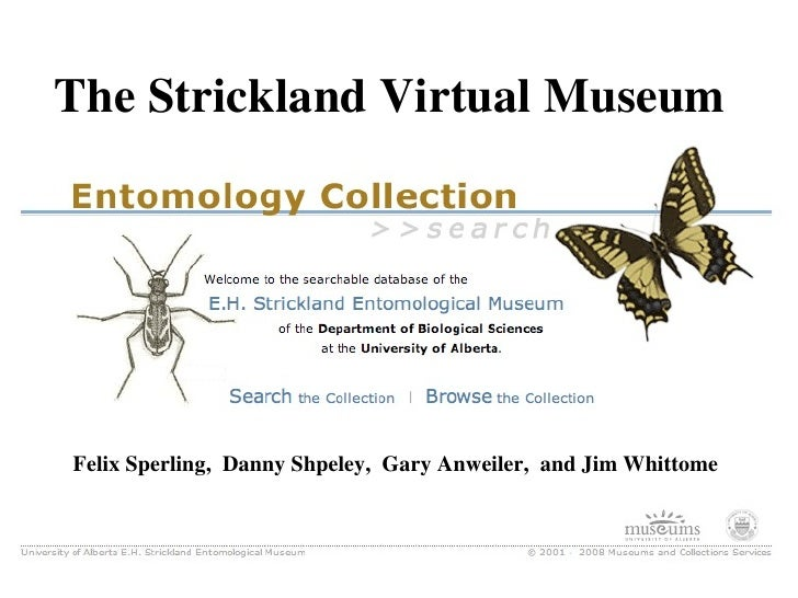 Felix Sperling,  Danny Shpeley,  Gary Anweiler,  and Jim Whittome The Strickland Virtual Museum