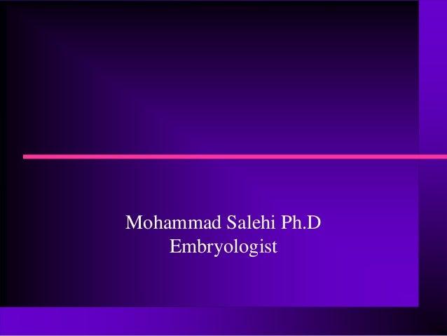 Mohammad Salehi Ph.DEmbryologist