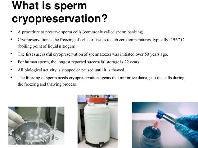 Sperm freezing video