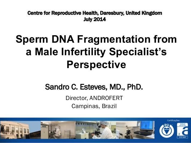 Sandro C. Esteves, MD., PhD. Director, ANDROFERT Campinas, Brazil            Sperm DNA Fragmentation from a Male I...