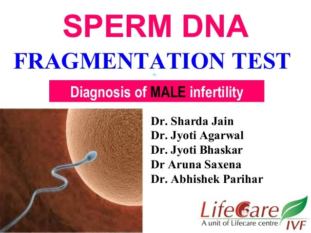 Specialist Sperm Dna Damage