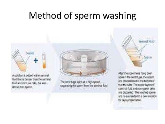 Sperm hiv wash